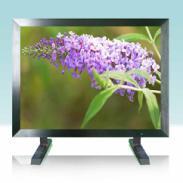 19寸LCD液晶监视器图片