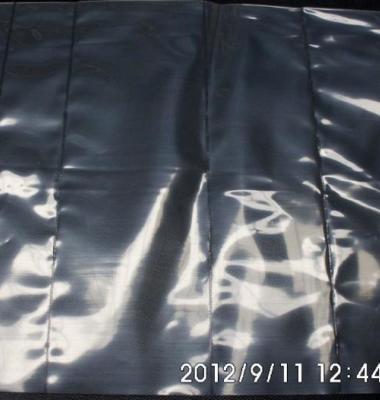 各种尺寸异形袋图片/各种尺寸异形袋样板图 (1)