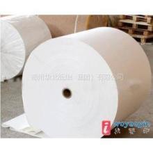 供应厂家直销高白静电复印原纸,全木浆小蜜蜂牌静电复印纸。批发
