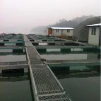 供应沅江网箱哪家最便宜,沅江网箱,沅江网箱首选厂家,万子湖渔业