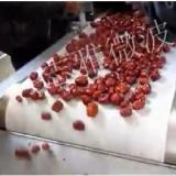 微波红枣干燥机