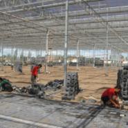山东生态园玻璃温室大棚图片