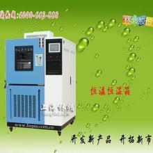 供应上海恒温恒湿环境试验箱林频仪器厂批发