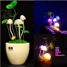 供应阿凡达蘑菇灯浪漫情侣创意小夜灯批发
