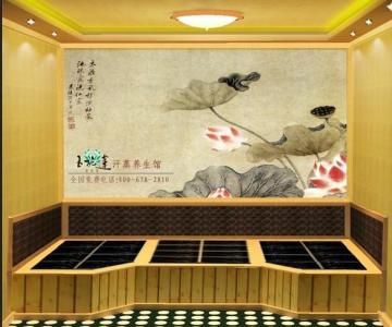 供应湖南省长沙市汗蒸房让你睡的香图片