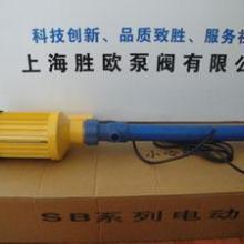 供应化工插桶泵