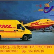 供应余姚三七和丈亭和渔溪国际快递DHL上门取件批发