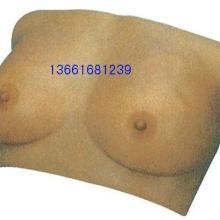 供应乳房检查模型护理模型、乳房检查模型、乳房自检模型