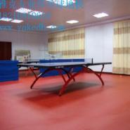 乒乓球防滑环保塑胶地板革乒乓球地图片