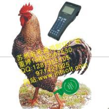 供应上海宰杀冰鲜鸡可追溯脚环系统