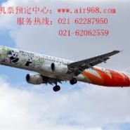 上海到湛江机票预订图片