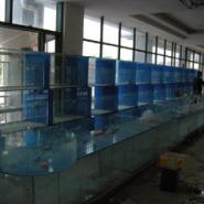 镇江酒店海鲜鱼缸制作价格亚克力图片