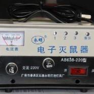 电猫高压灭鼠器图片