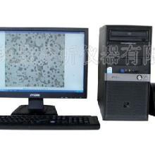 供应铸铁金相分析仪
