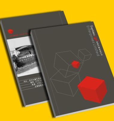 企业形象手册图片/企业形象手册样板图 (1)