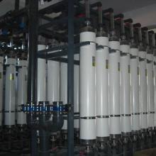 供应高底物浓度酶法制备壳寡糖批发