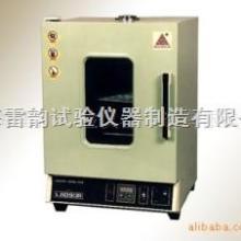 供应100B型不锈钢理化干燥箱,上海干燥箱厂家批发