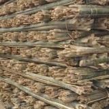 供应哈尔滨竹片厂家报价,哈尔滨竹片加工电话,哈尔滨竹片加工价格