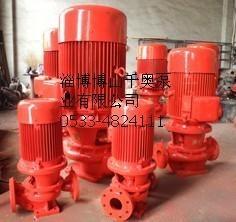 ISG立式单级消防泵图片/ISG立式单级消防泵样板图 (2)