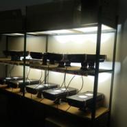 体育场专用投光灯100W白光图片