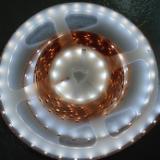 供应5050软灯条暖白一米60灯(可客户订制灯数)
