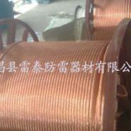 铜包钢绞线50平方80平方厂家图片