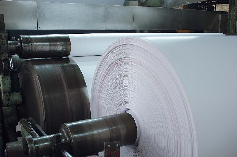 木浆双胶纸石家庄批发商