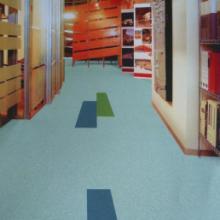 供应捷玛儿童塑胶地板/捷玛儿童塑胶地板厂家/天琴/天鹤
