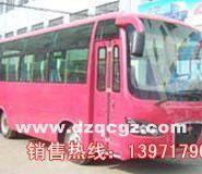 楚风教练客车图片