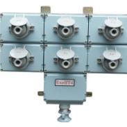BCX52防爆检修电源插座箱图片