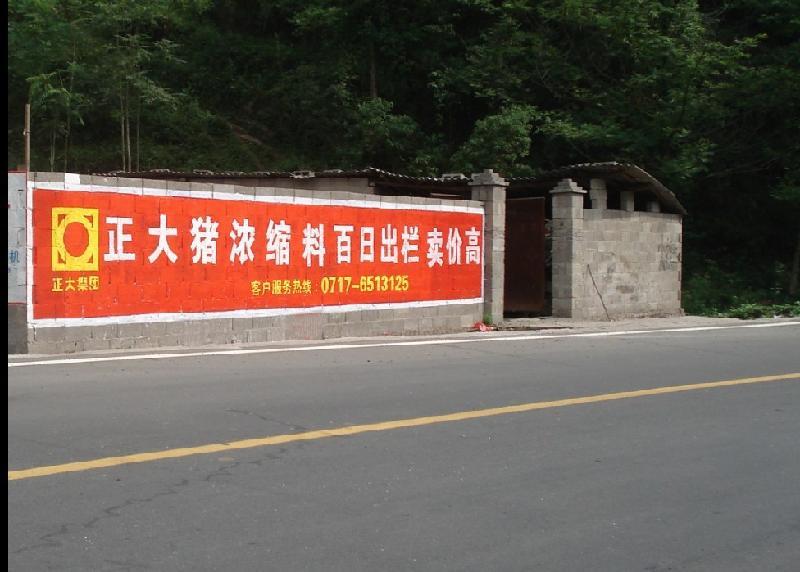 宜昌墙体广告案例正大饲料批发