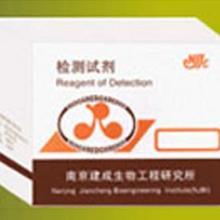 供应白介素-6(IL-6)批发