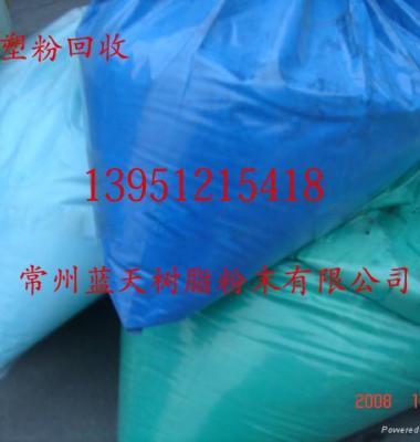 连云港塑粉回收图片/连云港塑粉回收样板图 (1)