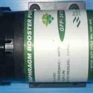 柏繁增压泵50G/纯水机专用泵图片
