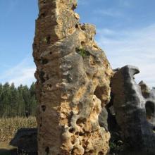 供应河南天然奇石观赏石太湖石厂家