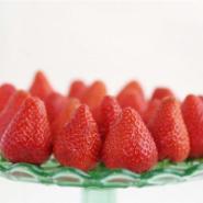 土特拉草莓苗/草莓苗/草莓苗公司图片