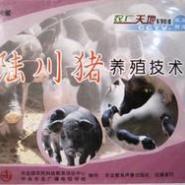 CCTV7农广天地陆川猪养殖技术图片