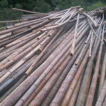 供应用于建筑的广西建筑脚手架用竹,建筑脚手架用竹批发,建筑脚手架用竹厂家批发