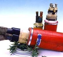 供应YJV交联电缆 高压交联电缆 低压交联电缆批发