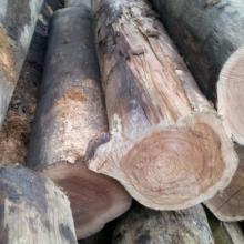供应广东进口木材印尼菠萝格柳桉木硬杂木山樟木地板批发