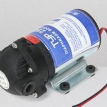 供应50G邓元泵增压泵/隔膜泵RO泵批发