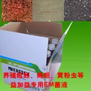 益加益em菌种菌液养蚯蚓用的产品图片