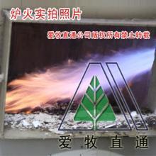 北京爱牧直通专业生产销售动物尸体焚烧炉DF-20