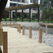 长沙森林步道工程/防腐木森林步道图片
