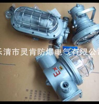 隔爆防水高压钠灯图片/隔爆防水高压钠灯样板图 (2)