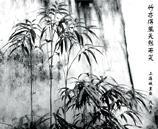 供应艺术墙纸-墙纸艺术-个性墙纸
