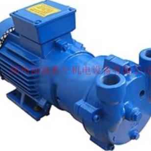 2BVA系列水环真空泵图片