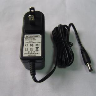 铅酸电池12V充电器图片