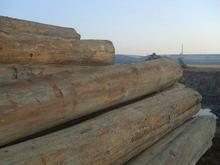 供应南非原木板材进口清关图片