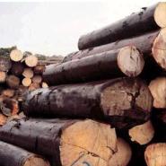 怎么办理进口欧洲木材单证图片